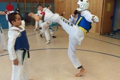 t_2016_05_12_taekwondo_Dietzenbach0008