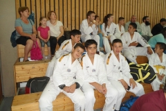 W_2015_06_14_taekwondo_Dietzenbach0001