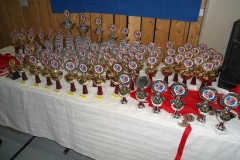 W_2015_06_14_taekwondo_Dietzenbach0004
