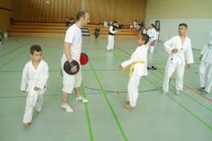W_2015_06_14_taekwondo_Dietzenbach0008