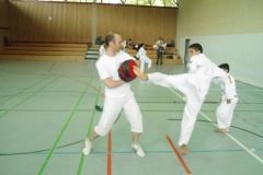 W_2015_06_14_taekwondo_Dietzenbach0014