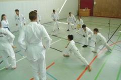 W_2015_06_14_taekwondo_Dietzenbach0017