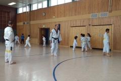 t_2016_05_12_taekwondo_Dietzenbach0001