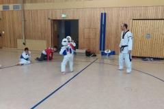 t_2016_05_12_taekwondo_Dietzenbach0004