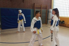 t_2016_05_12_taekwondo_Dietzenbach0012