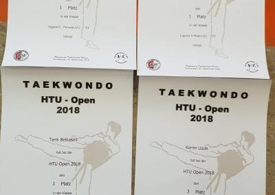 taekwondo-dietzenbach-htu-open-2018-11