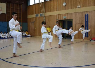 taekwondo-dietzenbach-kampfsport-Gürtelprüfung-dezember-2018-11