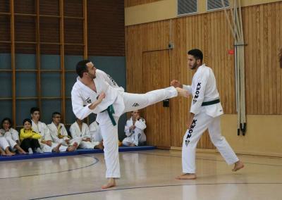taekwondo-dietzenbach-kampfsport-Gürtelprüfung-dezember-2018-17