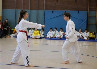 taekwondo-dietzenbach-kampfsport-Gürtelprüfung-dezember-2018-21