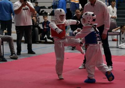 taekwondo-dietzenbach-Wettkampf-Kobra-Pokal-2019-20