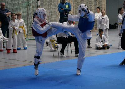 taekwondo-dietzenbach-Wettkampf-Kobra-Pokal-2019-21