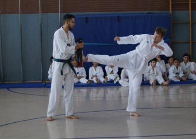 taekwondo-dietzenbach-Gürtelprüfung-Juni-2019-11