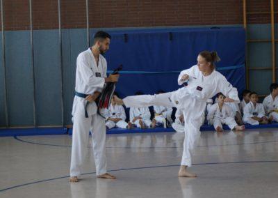 taekwondo-dietzenbach-Gürtelprüfung-Juni-2019-12