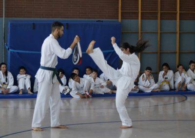 taekwondo-dietzenbach-Gürtelprüfung-Juni-2019-14