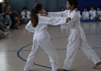 taekwondo-dietzenbach-Gürtelprüfung-Juni-2019-15