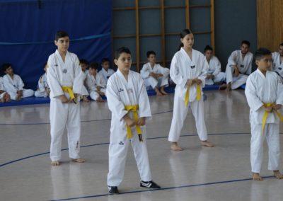 taekwondo-dietzenbach-Gürtelprüfung-Juni-2019-17