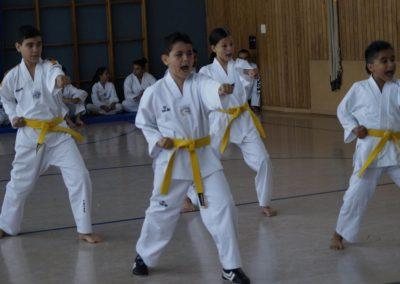 taekwondo-dietzenbach-Gürtelprüfung-Juni-2019-18