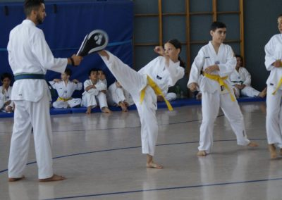 taekwondo-dietzenbach-Gürtelprüfung-Juni-2019-19
