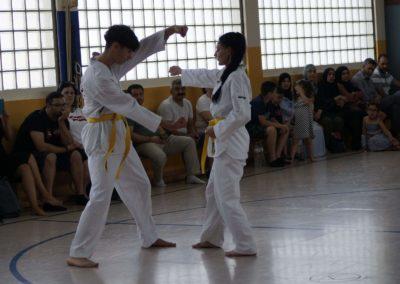 taekwondo-dietzenbach-Gürtelprüfung-Juni-2019-21