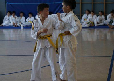 taekwondo-dietzenbach-Gürtelprüfung-Juni-2019-22