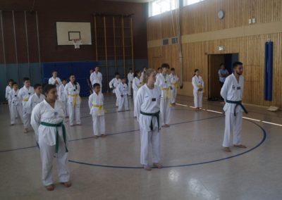 taekwondo-dietzenbach-Gürtelprüfung-Juni-2019-26