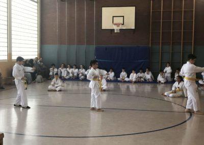 taekwondo-dietzenbach-Gürtelprüfung-Juni-2019-42